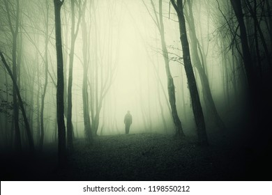 man in haunted forest, scary surreal scene