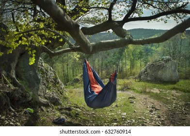 A man hidden in the hammock under an old tree.  Spring, natural light from behind. Go green concept. Holidays. Recreation. No people.