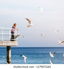Man hiker backpacker on pier. Young guy tramping with backpack by seaside. Adventure and tourism. Beautiful sea landscape with seagull birds flying above water surface