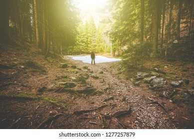 man hiker thinking in the forest in mountain - time to disconnect concept - intentional artificial flare image