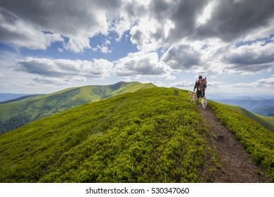A man is hiking in the Carpathian mountains