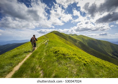 A man is hiking in the Carpathian mountains with dogs