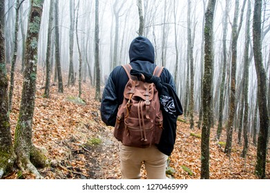 Man hiking on a foggy trail through the trees on a trail in Boone, North Carolina. Part of the Appalachian mountains. Leather backpack and adventuring in the winter time
