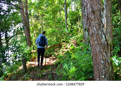 A man is hiking on a nature trail in the evergreen forest on 15 October 2018 , Pang Ung, Mae Hong Son, in Thailand He is wearing a HUF Hoodie, Nike shoes and a Dell bag.