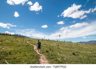 Man hiking through a trail in Colorado.