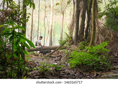 Man hiking or trekking with his dog in a tropical jungle in a misty morning