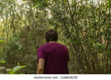 Man hiking in the woods at summer time