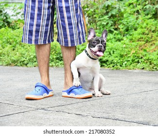 Man with his dog  (French Bulldog)  in the street