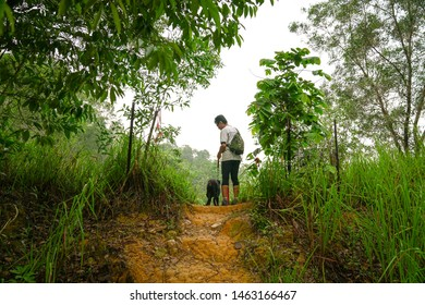 Man and his dog standing at a hill top with view of their backs