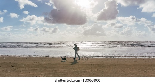 Man and his dog walking at the beach at sunset or sunrise.