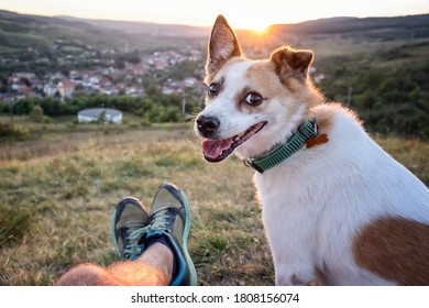 Man and his dog watching the sunset on a hill over the village (own point of view)