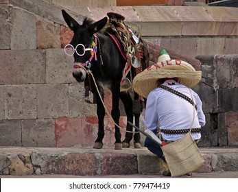 Man and his donkey dressed up for mexican revolutionary fesivities in San Miguel de Allende