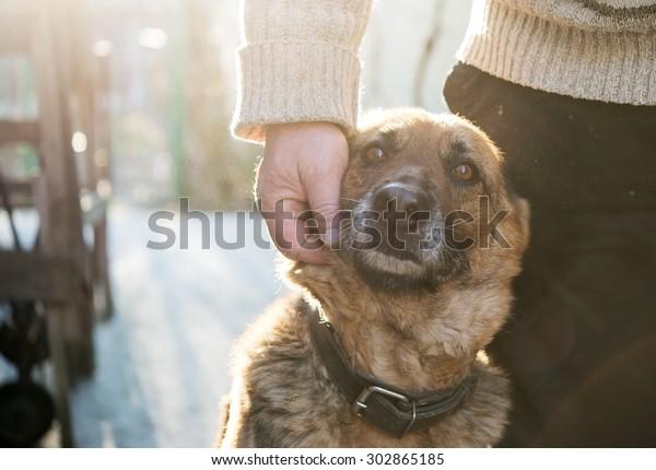 Man et son chien berger allemand