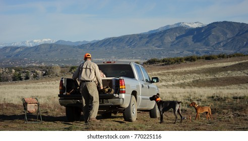 Man at his truck with two hunting dogs in the middle of a field