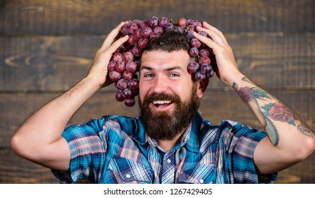 Man hold grapes wooden background. Fresh organic harvest. Farmer bearded guy with homegrown harvest grapes put on head. Grapes from own garden. Farming concept. Farmer proud of grapes harvest.