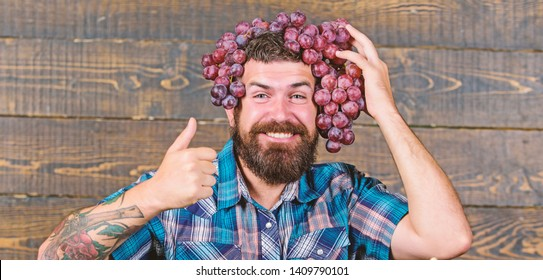 Man hold grapes wooden background. Farmer bearded guy with homegrown harvest grapes put on head. Farmer proud of grapes harvest. Fresh organic harvest. Grapes from own garden. Farming concept.
