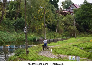 Man holding barrow and walking through pavement near the pond. Dog assist his master while he's working. Dog and human together on a gloomy autumn day. Man working outdoors. Green grass and water.