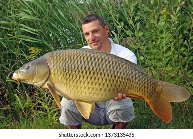 Man holding a big common carp. Freshwater fishing, catch of fish