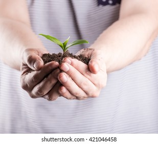 Man holding bunch of fertile soil in hands with young green sprout on top of it