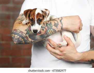 Man holding cute dog on brick wall background