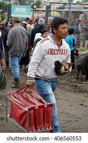 Man holding a fighting rooster in his arm and carrying its case in the Otavalo Animal Market
