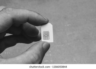 man holding fingers SIM card on grey background with copy space, black and white photo