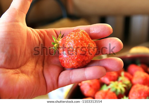 Man holding a fresh strawberry on the palm