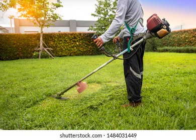 A man holding grass trimmer. Worker mowing lawn with garden trimmer rotating left and right.
