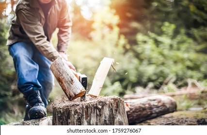 Man holding heavy ax. Axe in lumberjack hands chopping or cutting wood trunks .