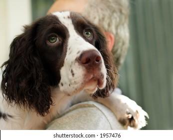 Man holding his spaniel dog