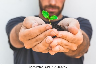 Man holding a little growing plant in front of his blurry face. Eco friendly and natural concept.