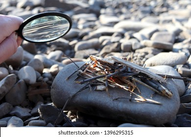 The man is holding a magnifying glass, burning a sliver of sunlight, make a fire.