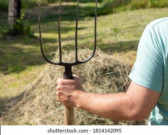 a man is holding a pitchfork. In the background is a haystack. Sunny day, summer. Concept of agriculture