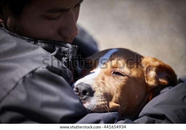 man holding sleepy puppy dog closeup selective focus daylight
