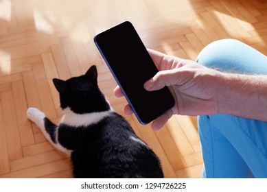 Man holding a smart phone taking a photo of a cat.