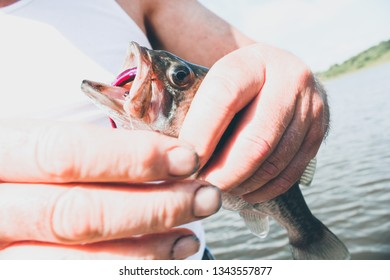 man hold's fish just caught while fishing
