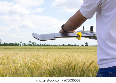 Man holds fixed wings drone above the wheat field, prepares for drone launch and aerial imaging of crops