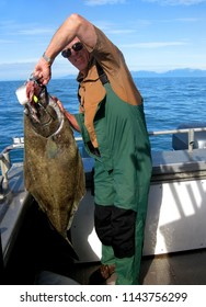 Man holds a halibut that he has caught.  He is wearing green overalls and is standing in a boat fishing in Alaska.