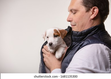 Man holds jack russell terrier puppy in his hands