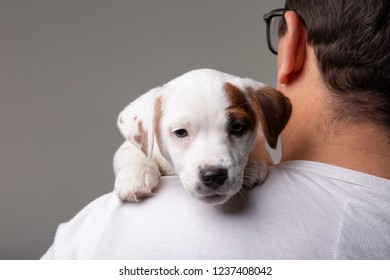 Man holds a puppy in his hands on the shoulder in studio