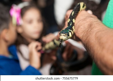 Man holds snake in his hand during kids party