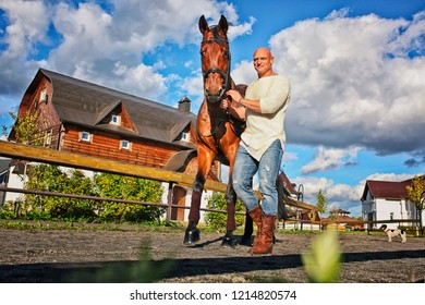 a man with a horse are on the road