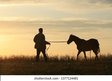 Man and horse silhouette in summer field in the early morning at sunrise