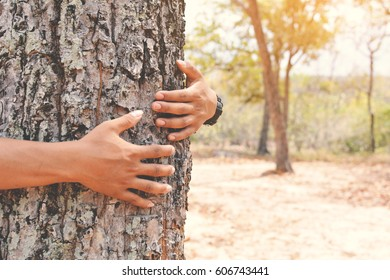Man hug big tree color of hipster tone selective soft focus, concept nature and people