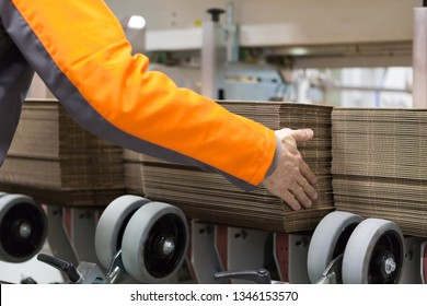 Man Inserting Carton into the Cart Paper Folding Machine Transfer Wheels Rollers Print Production