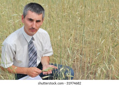 Man inspecting the wheat