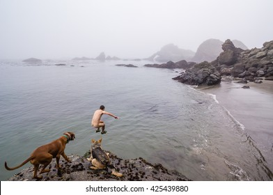 Man jumps off cliff into ocean while dogs watch.
