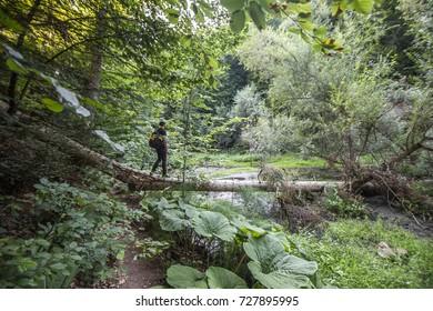 Man in Jungle
