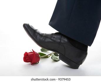 man leg  step on the rose