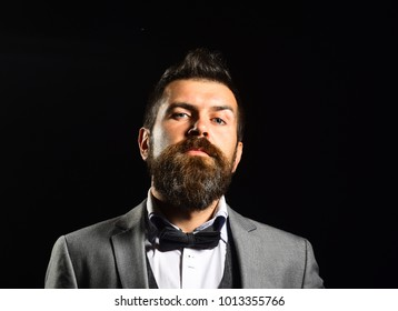 Man with long beard and bow tie. Macho in formal suit has stylish haircut. Business and style concept. Businessman with arrogant face isolated on black background.